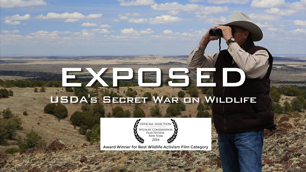 Photo - film EXPOSED wins best activism award