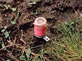 Photo of deadly M-44 cyanide device by Brooks Fahy