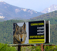 Photo of Yellowstone Park billboard